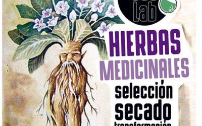 Taller de hierbas medicinales : selección secado y mezcla casera