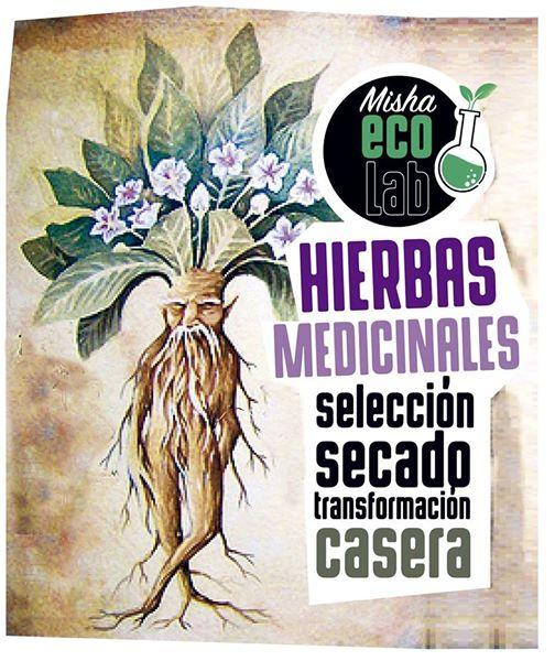 Manual Práctico para el uso casero de Hierbas Medicinales
